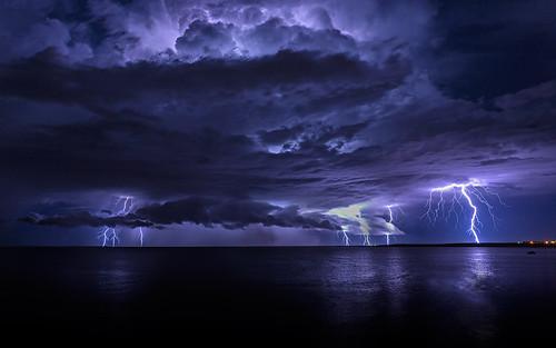 人に雷が落ちるとどうなるのか?身体に表れる「電紋」とは?