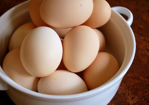 黄身が2つ入っているラッキーな卵「二黄卵」とは?