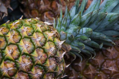 パイナップルやキウイに含まれるタンパク質分解酵素とは?