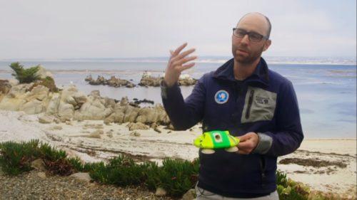 シロナガスクジラの心拍数測定装置