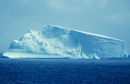 南極で過去最高気温の20.75度が観測される、南極・シーモア島