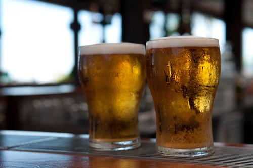 ビールに含まれる苦み成分が、注意機能とストレス状態を改善することが明らかになる
