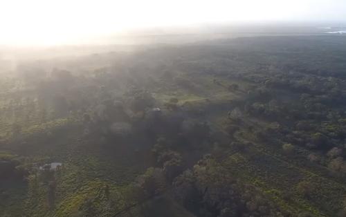 レーザー測距技術により史上最大のマヤの遺跡を発見、メキシコ・タバスコ州