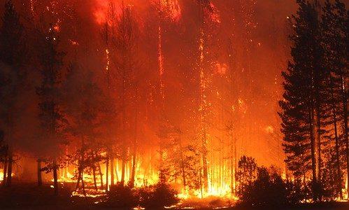 アメリカ・カリフォルニア州で史上最大規模の山火事が発生中