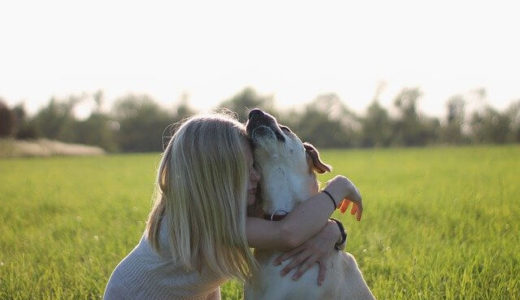 ペットの死を経験した子どもは精神病理的な症状を抱えやすくなる、マサチューセッツ総合病院