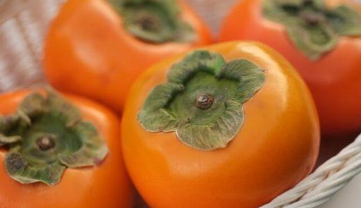 外見からでは分からない柿の病気を見抜くAI、検出率は熟練者と同等以上――岡山大学