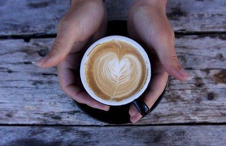 甲虫にとってカフェインは媚薬である可能性、カフェイン摂取で積極的に求愛――岡山大学