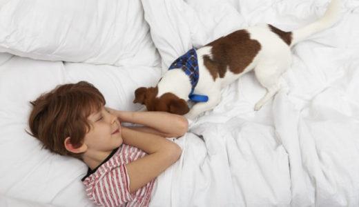子どもはペットと一緒に寝るとぐっすり眠れる――カナダ・コンコルディア大学