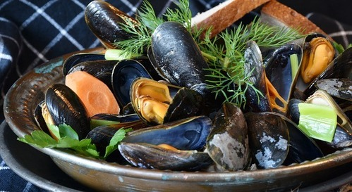 mussels-3148452_640